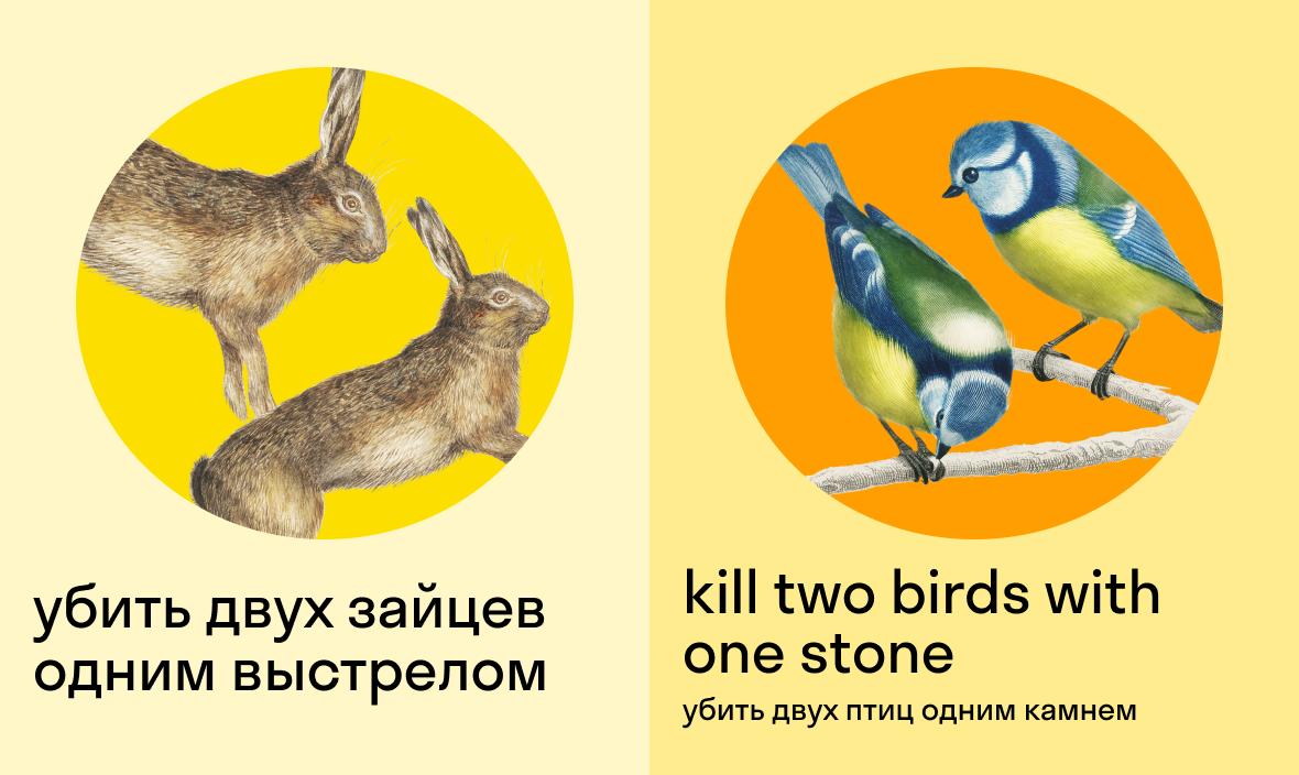 убить двух зайцев одним выстрелом по-английски — kill two birds with one stone — убить двух птиц одним камнем
